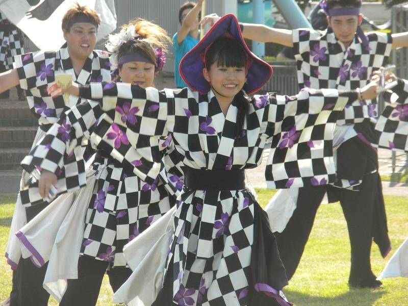 yusakoi2